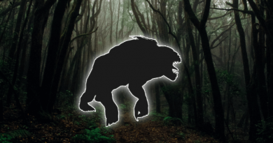 Mytológia vZaklínačovi #2 – Striga